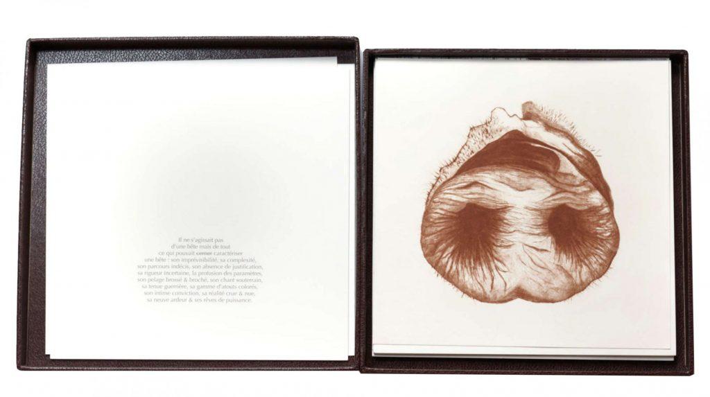 animals, éditions alma.encrage, 2020